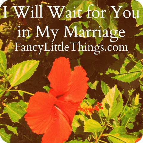 i-will-wait-marriage-post