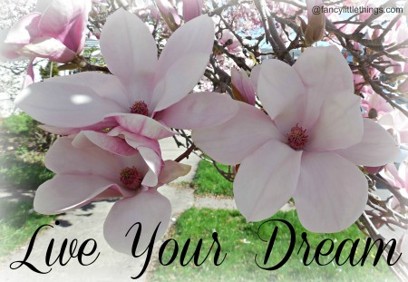 Live Your Dream @FancyLittleThings.com