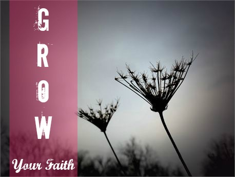 Grow Your Faith @ Fancy Little Things
