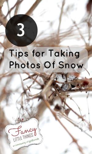 snowphoto3