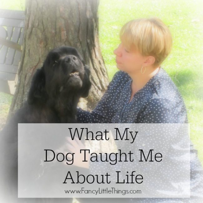 What My Dog Taught Me About Life